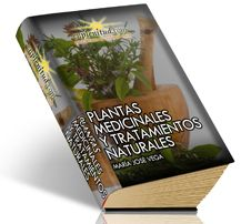 Plantas medicinales y tratamientos naturales